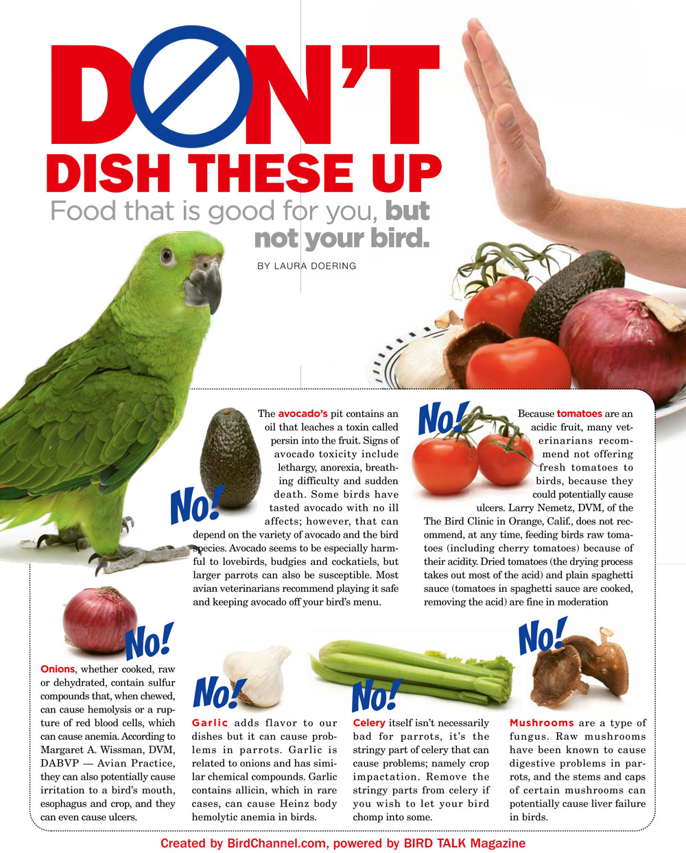Indian Ringneck Poisonous Food